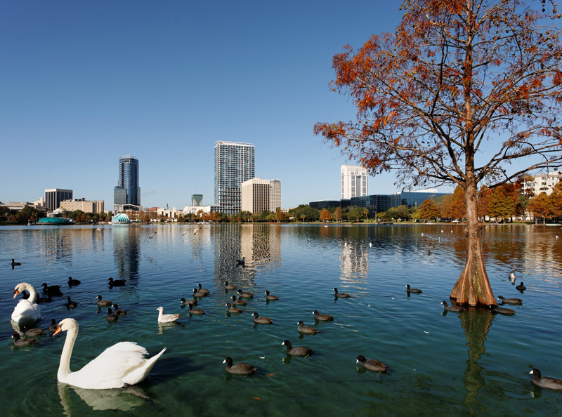 Downtown Orlando Hotels Near Lake Eola